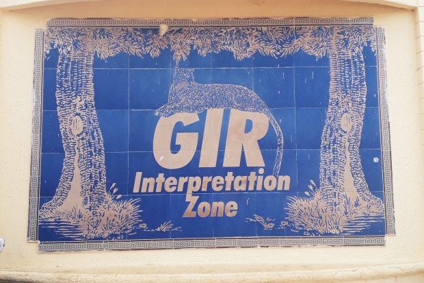 Gir Interpretation zone